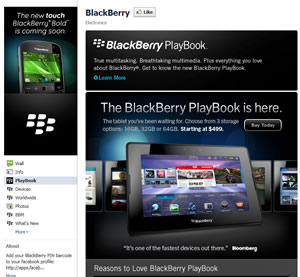 Blackberry Facebook Fan Page | Jabari Holder